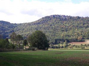 Ehrenbachtal